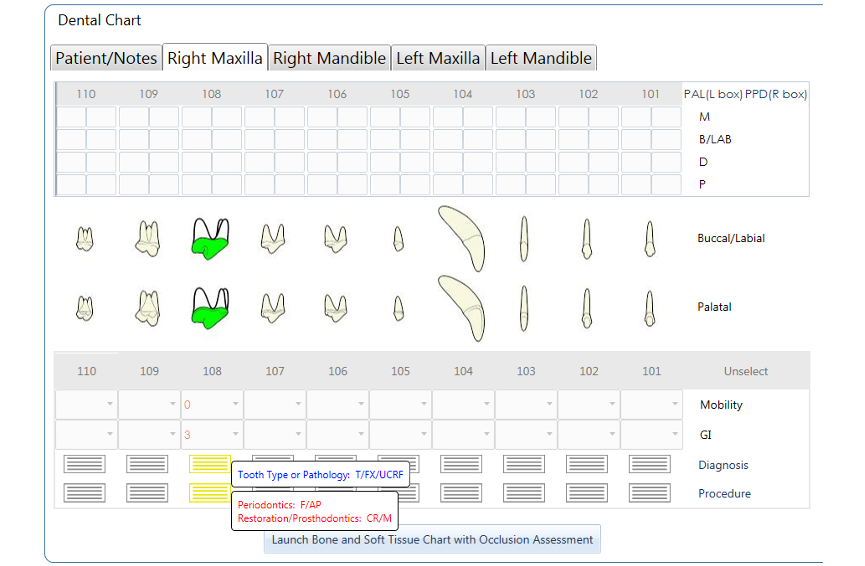 Dental Chart - Canine Permanent 108 UCCF, F-AR, CR-M NEW