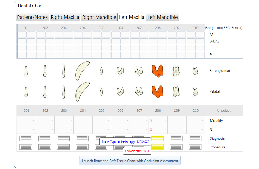 Dental Chart - Canine Permanent 208 CCF, RCT NEW